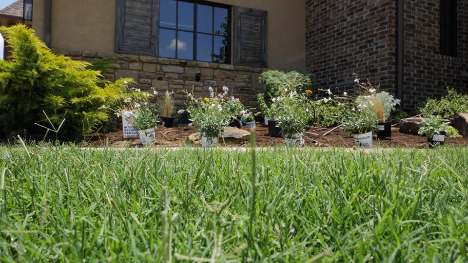 3 Ideas For Low Maintenance Landscaping Apple Valley Eco Landscapes